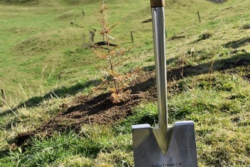 Tree Planting Ceremony to Commemorate New Forestry