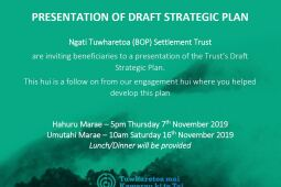 Presentation of Draft Strategic Plan